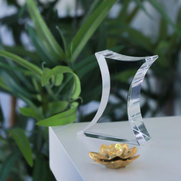 cristal_forma_regalo_empresa_obsequio_personalizado_foto_2D_3D_seyart_1