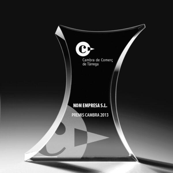 cristal_trofeo_conmemorativo_forma_regalo_personalizado_foto_2D_3D_premium_seyart_4